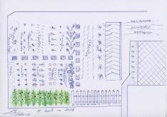 Elo Viejo_Herbarium_croquis de huerto para cuaderna de campo
