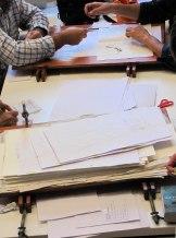 evaluando el herbario
