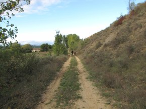 Paseo por Cerezales, reconocimiento de flora en Otoño