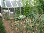LorenaLozano_Herbarium_JardindeElo4