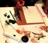 LorenaLozano-Herbarium-13