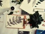 LorenaLozano-Herbarium-14