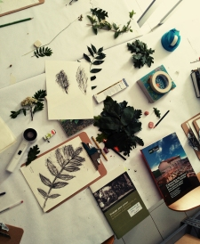 LorenaLozano-Herbarium-3
