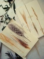 Herbarium-LorenaLozano12