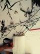 Herbarium-LorenaLozano6