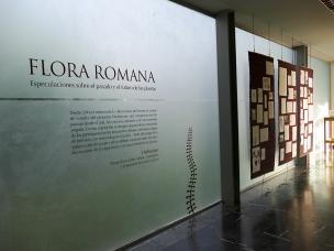 Herbarium. Lorena Lozano4